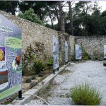 Jardin InsectPark mail