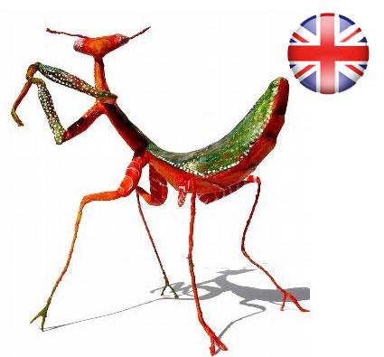 10-12-2016: Crea tu propio insecto venenoso en papel maché