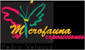 logo-microfauna