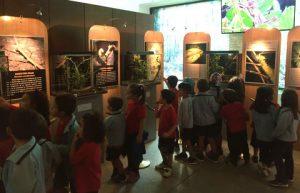 Visitas colegios a Insectpark