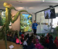 Agosto | Visitas guiadas en InsectPark