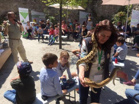 Marzo | Contacto con reptiles