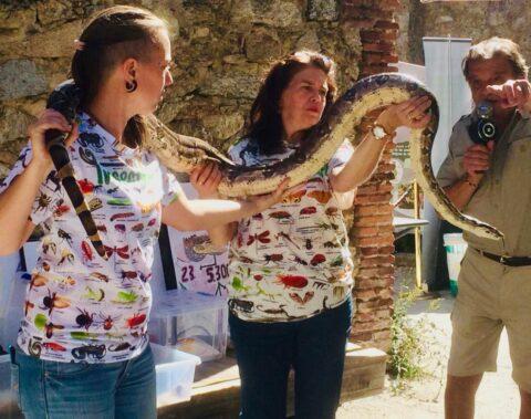 Diciembre | Encuentro con reptiles