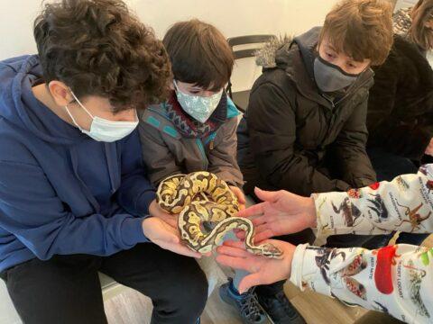 Febrero | Encuentro con reptiles