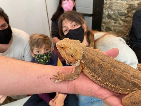 Junio | Encuentro con reptiles
